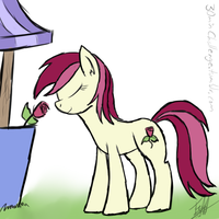 30 minute challenge - Roseluck by ToMaz777