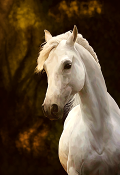 The White One by feverpaint