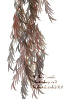 Willow Brush by hajek-barbara