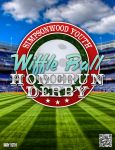 Wiffle Ball Derby Teaser Flyer by Treybacca