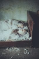 The Two Sisters by laura-makabresku