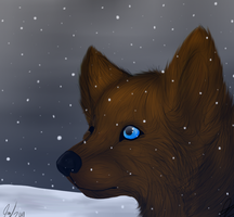 Snow. by RedSunAtDawn