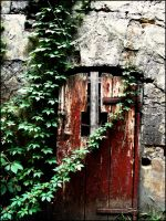 door by Kanashii-Hito