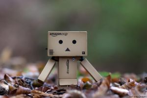 Danbo's autumn by Funky-Dragon