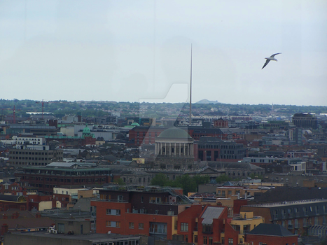 Flight over Dublin by sannajakamera