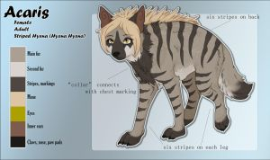 Acaris - Feral Reference Sheet by Acaris