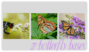 Butterfly Bases by gfxgurl