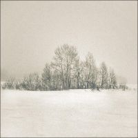 winter by LOWfrequencies