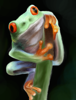Red Eyed Tree Frog by Redeyedmoon