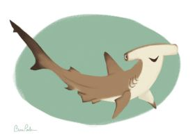SHARK WEEK: Hammerhead by breebird
