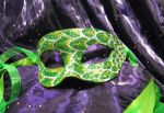 Green Leaf Sparkle Mask by ToTheMask