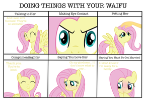 Doing Things With Your Waifu - Fluttershy by PaulyVectors