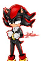 shadow the hedgehog by jcgieafe