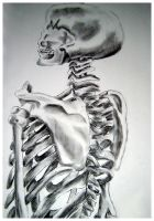 Skeleton in Charcoal by Demoncherry