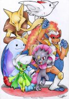 Pokemon Platinum Team by X-Seion-X