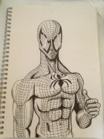 Spiderman by Wes-D84