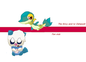 My contest enry by Kat-The-Piplup