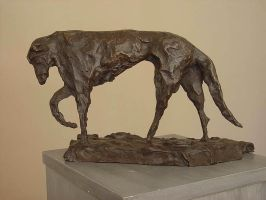 Scottish Deerhound by ygres