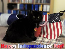 Happy Independence Day by jenny-in-ga