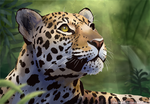 Jaguar by The-Hare