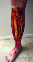 Tibia by PlaceboFX