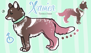 Xavier by ashleigheperry