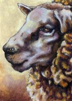 Sheep ACEO by glait