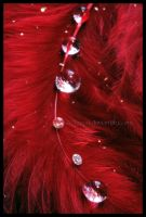 Droplets and Diamonds by Xerces