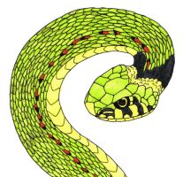 Snake by Mr-Lays