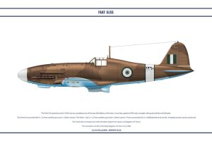 Fiat G55A Egypt 1 by WS-Clave