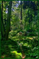 Where faeries roam by Thalassy by Scapes-club