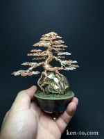 Large 3-color wire bonsai tree by Ken To by KenToArt