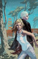 Buffy the Vampire Slayer Season 10 issue 11 by StevenJamesMorris