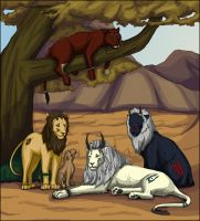 Kings of the Barrens by Mahsa