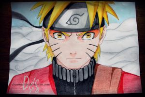 Naruto Shippuden by Chanimal-DS