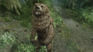 Skyrim: NPC Cute Bear by haunted-passion