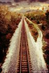 Florida Rails by timhowe