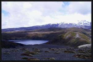 Tongariro landscape by Macomona