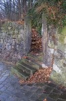 Old stone steps 3 by annawsw