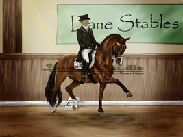 Attention to Detail - Dressage by SageSinRiddle