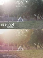 Sunset Photoshop Action by tiny-moon