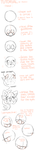 how to draw a head by Miiukka