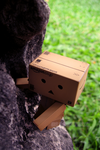 Rock Climbing Danbo by odoll