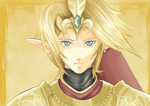 Link with the magical armor by Yuese