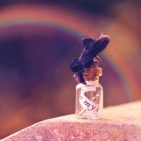 Message Under The Rainbow by Sarah-BK