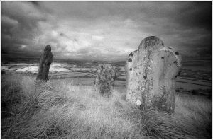 Field of the Dead by N47nFantasyLove