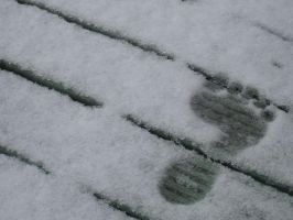 footprint in the snow by sillysammy