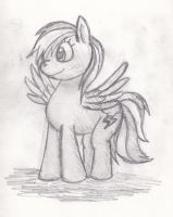 Rainbow Dash Sketch by Bombkirby