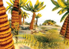 Tropical Island by Sombraube