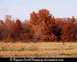 Landscape-stock 16 by EquineStockImagery